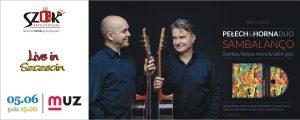 Pełech & Horna Duo - koncert w ramach SZOK ARTS FESTIVAL